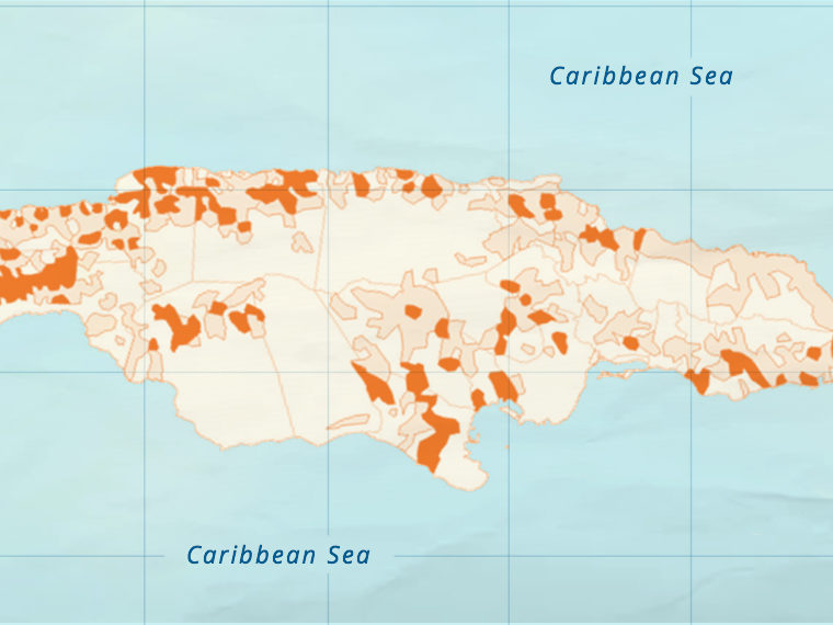 Illustration of Caribbean